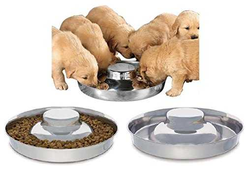 King International 100 % Stainless Steel Dog Bowl   1 Puppy Litter Food Feeding Weaning 29 cm   Silver Stainless Dog Bowl Dish   29 cm diameter 41ZWtl3KnCL